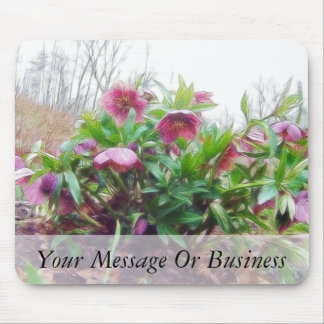 Perennial Hellebore Plants In The Garden Mouse Pad
