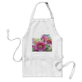 Perennial Plants - Purple Hellebore Aprons