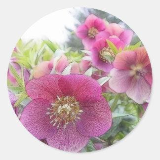Perennial Plants - Purple Hellebore Sticker