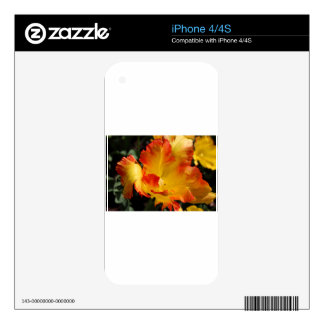 Perennial Pleasure iPhone 4S Skin