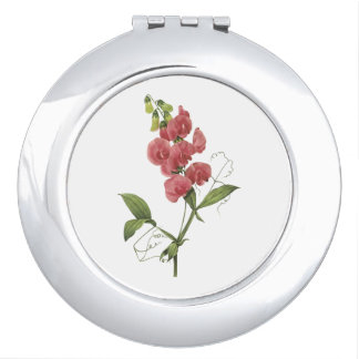 perennial sweet pea by Redouté Compact Mirror