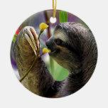 Pereza de árbol Tres-Tocada con la punta del pie Ornamento De Reyes Magos