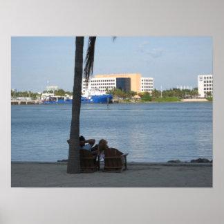 Perezoso en Miami Poster