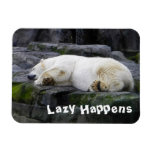Perezoso sucede el oso polar imán