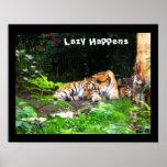 Perezoso sucede el tigre siberiano posters