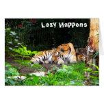 Perezoso sucede el tigre siberiano tarjetón