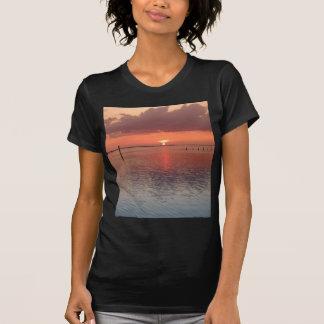 Perfección de Twilite Camisetas