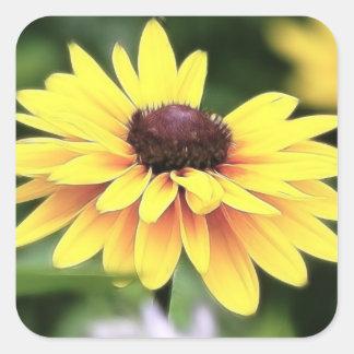 Perfección del jardín - Susan observada negro Calcomania Cuadradas Personalizada