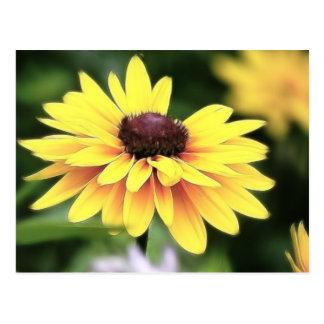 Perfección del jardín - Susan observada negro Postal