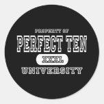 Perfeccione la oscuridad de diez universidades pegatinas redondas