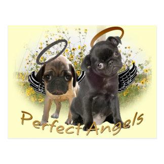 Perfect Angel Pugs Postcard