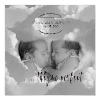 Perfect Baby Twins Photo Template PBXT Poster