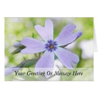 Perfect Blue Creeping Phlox Flower Greeting Cards