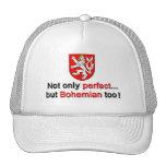 Perfect Bohemian Hats
