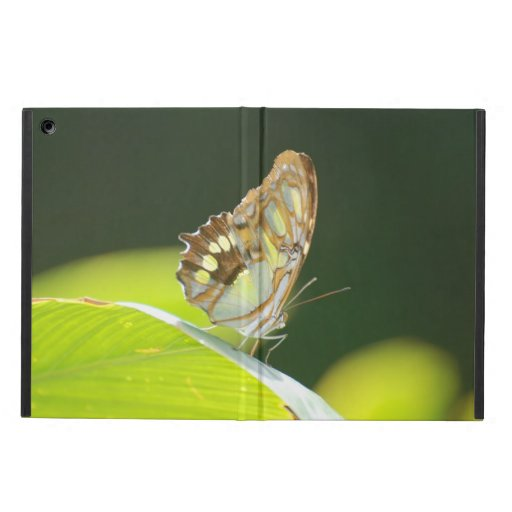 Perfect Butterfly Cover For iPad Air
