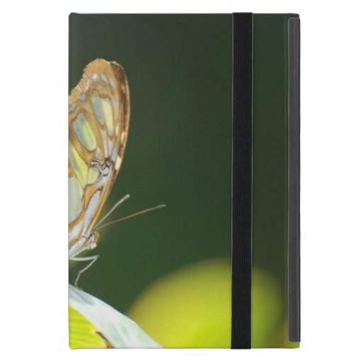 Perfect Butterfly iPad Mini Cover