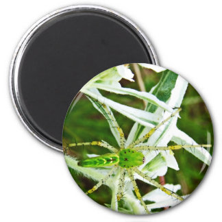 Perfect Camo by Nature Bug 2 Inch Round Magnet