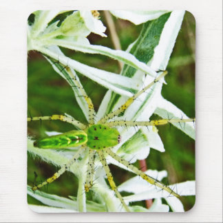 Perfect Camo by Nature Bug Mouse Pad