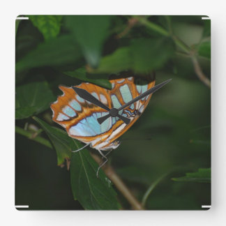 Perfect Camoflage Butterfly Wings Square Wall Clock