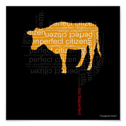 Perfect Citizen Poster