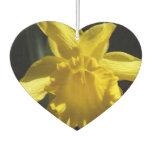 Perfect Daffodil Car Air Freshener