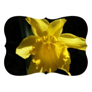 Perfect Daffodil Card