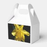 Perfect Daffodil Favor Box at Zazzle