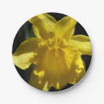 Perfect Daffodil Paper Plate