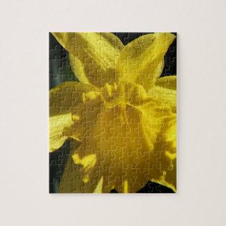 Perfect Daffodil Puzzle