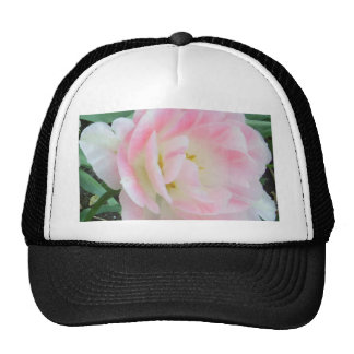 """Perfect Elegance""  CricketDiane Art, Design & Pho Trucker Hats"