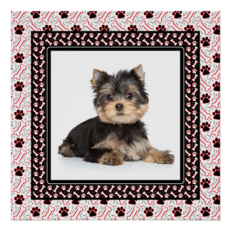 Perfect Framed Portrait of Your Pampered Pooch Poster
