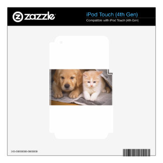 Perfect Friendship iPod Touch 4G Decal