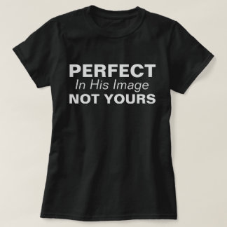 Perfect, In His Image, Not Yours T-Shirt