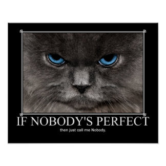 Perfect Nobody Cat Artwork Poster