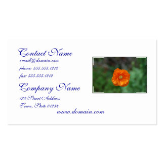 Perfect Orange California Poppy Double-Sided Standard Business Cards (Pack Of 100)