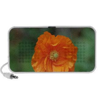Perfect Orange California Poppy iPod Speaker