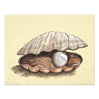 Perfect Pearl Seashell Art Photo