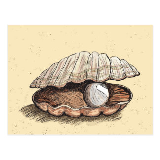 Perfect Pearl Seashell Postcard