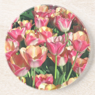 Perfect Pink and Peach Tulips Coaster