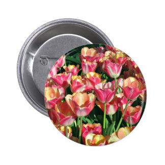 Perfect Pink and Peach Tulips Pinback Button