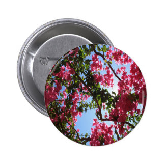 Perfect Pink Bougainvillea In Blossom Pinback Buttons