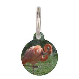 Perfect Pink Flamingo Pet ID Tag