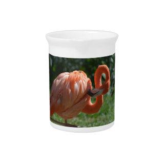 Perfect Pink Flamingo Pitchers