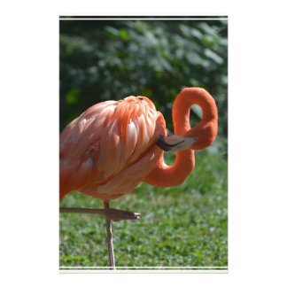 Perfect Pink Flamingo Stationery