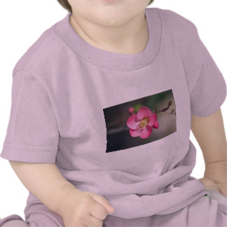 Perfect Pink Flowering Quince Tee Shirts