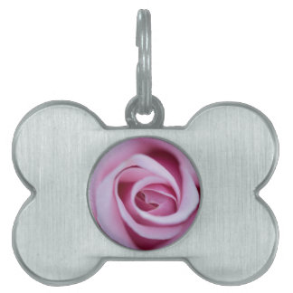 Perfect Pink Rose Pet ID Tag