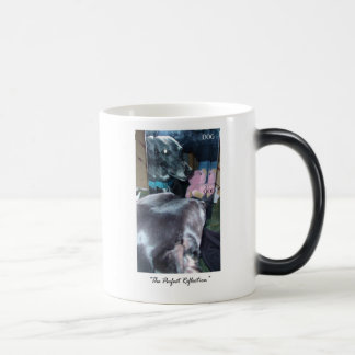 Perfect Reflection - God / Dog 11 Oz Magic Heat Color-Changing Coffee Mug
