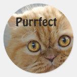 Perfect Round Sticker