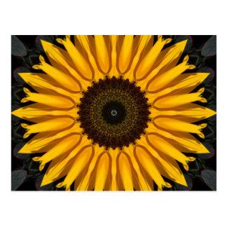 Perfect Sunflower Postcard