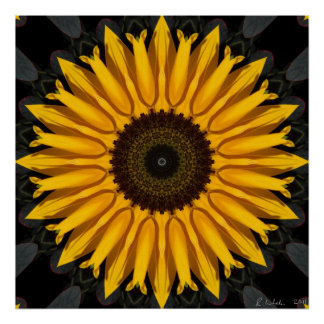 Perfect Sunflower Poster
